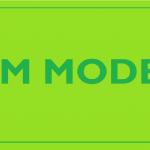 Enkele centrale stellingen in het Integratieve Contextuele Managements (ICM) Model